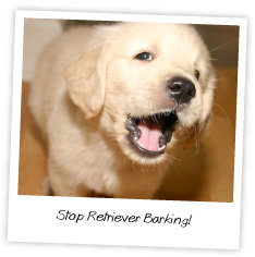Stop a Barking Retriever