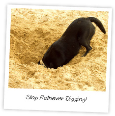 Stop your Retriever from Digging